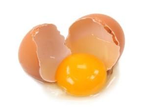 egg-yolk-300x226