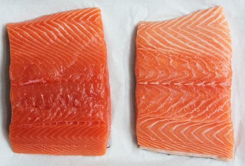 Rozdiel medzi divokým (vľavo) a lososom z farmy (vpravo)