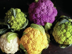 cauliflower +