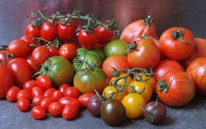 tomatoes-02